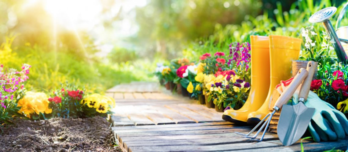 The Best Ways To Get Your Garden Ready For Spring